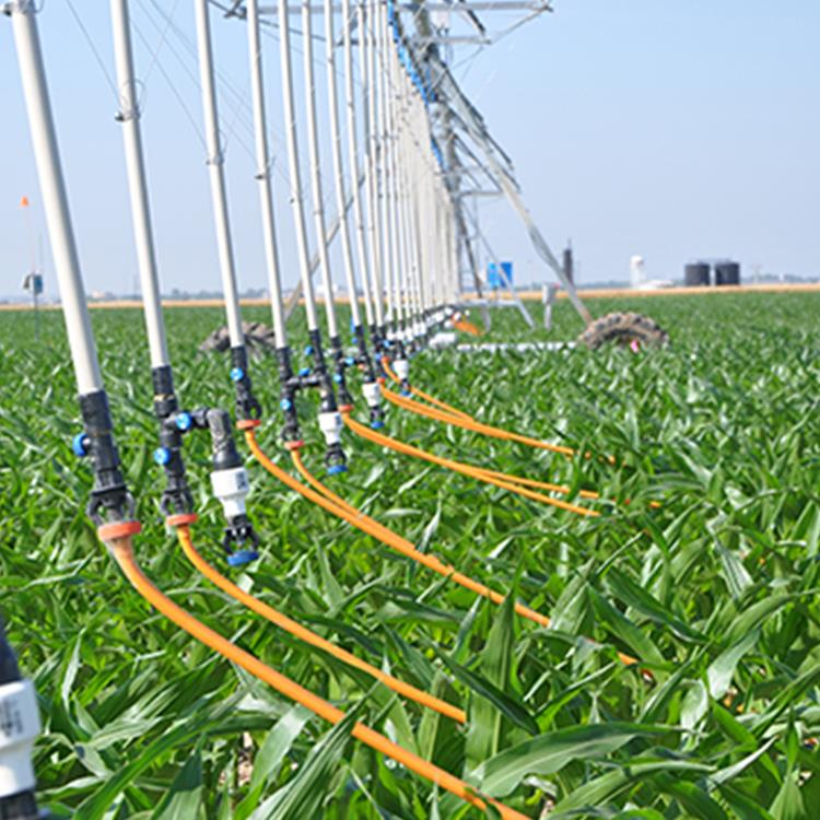 Irrigation consortium to help equip farms of the future