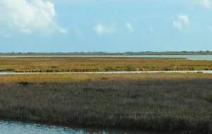 Copano Bay Stakeholder Meeting