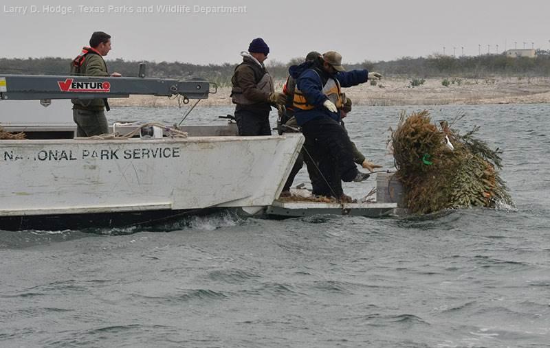 Fisheries in flux | TWRI