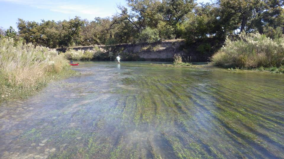 Fishing in the South Llano River.