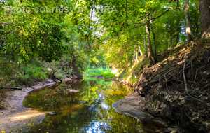 Wolf and Sandy Creeks Water Quality Meeting - Woodville
