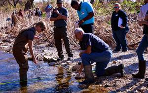 Urban Stream Processes and Restoration Training - Corpus Christi