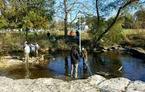Urban Stream Processes and Restoration Training - South Texas